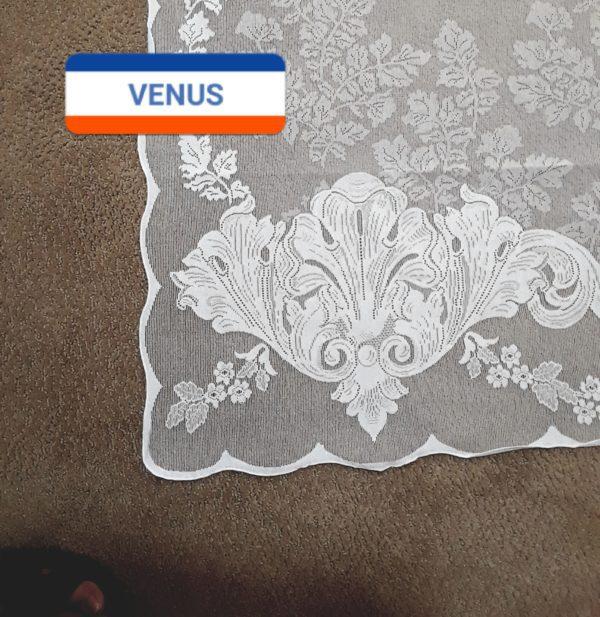 Triump of Venus corner detail