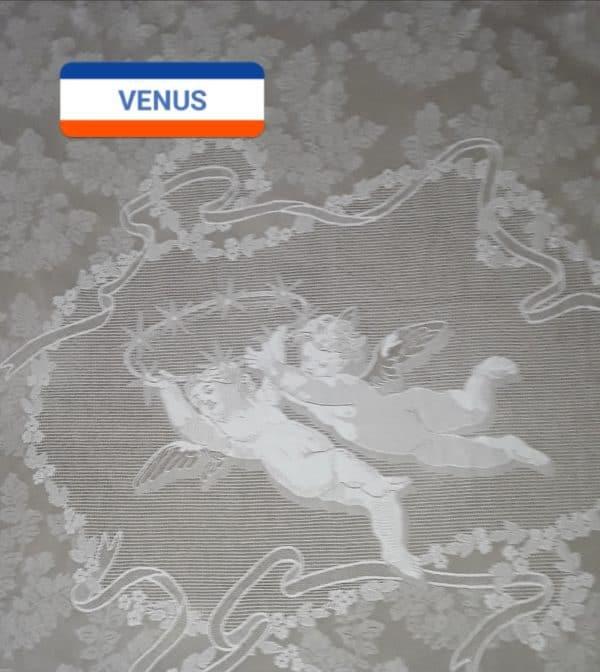 Triumph of Venue top detail
